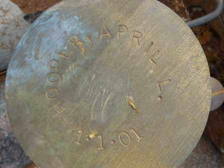 HARPER, APRIL L. - Maricopa County, Arizona | APRIL L. HARPER - Arizona Gravestone Photos