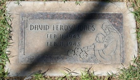JONES, DAVID LEROY - Maricopa County, Arizona | DAVID LEROY JONES - Arizona Gravestone Photos