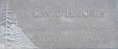 JONES, DAVID H. - Maricopa County, Arizona | DAVID H. JONES - Arizona Gravestone Photos