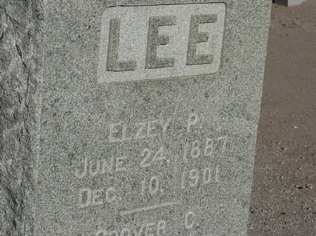 LEE, ELZEY P - Maricopa County, Arizona | ELZEY P LEE - Arizona Gravestone Photos