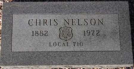 NELSON, CHRIS - Maricopa County, Arizona | CHRIS NELSON - Arizona Gravestone Photos