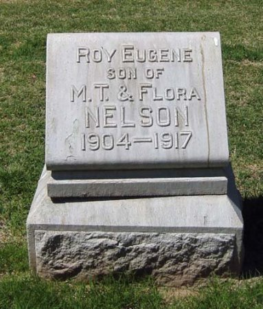 NELSON, ROY EUGENE - Maricopa County, Arizona | ROY EUGENE NELSON - Arizona Gravestone Photos