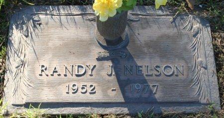 NELSON, RANDY J - Maricopa County, Arizona   RANDY J NELSON - Arizona Gravestone Photos