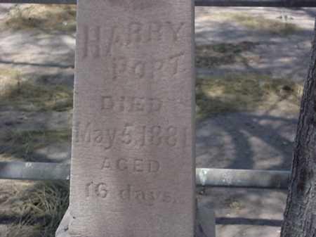 PORT, HARRY - Maricopa County, Arizona | HARRY PORT - Arizona Gravestone Photos