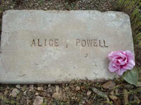 POWELL, ALICE - Maricopa County, Arizona   ALICE POWELL - Arizona Gravestone Photos
