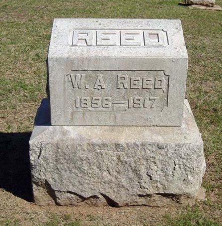 REED, WILLIAM A. - Maricopa County, Arizona   WILLIAM A. REED - Arizona Gravestone Photos