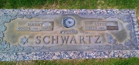 SCHWARTZ, ESTEE - Maricopa County, Arizona   ESTEE SCHWARTZ - Arizona Gravestone Photos
