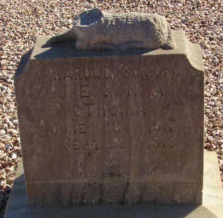 THUMA, HAROLD - Maricopa County, Arizona | HAROLD THUMA - Arizona Gravestone Photos
