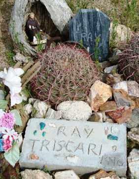 TRISCARI, RAY - Maricopa County, Arizona | RAY TRISCARI - Arizona Gravestone Photos