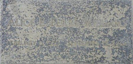 WILLIAMS, ALICE E FERRE - Maricopa County, Arizona   ALICE E FERRE WILLIAMS - Arizona Gravestone Photos