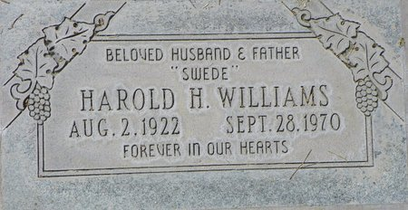 WILLIAMS, HAROLD H - Maricopa County, Arizona | HAROLD H WILLIAMS - Arizona Gravestone Photos