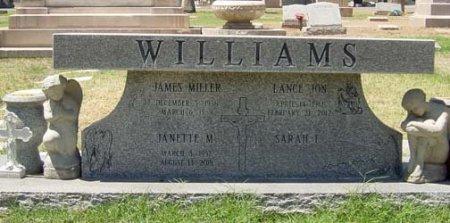 WILLIAMS, JANETTE M - Maricopa County, Arizona | JANETTE M WILLIAMS - Arizona Gravestone Photos