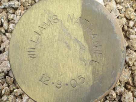 WILLIAMS, NATHANIEL - Maricopa County, Arizona | NATHANIEL WILLIAMS - Arizona Gravestone Photos