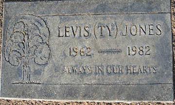 JONES, LEVIS (TY) - Mohave County, Arizona | LEVIS (TY) JONES - Arizona Gravestone Photos