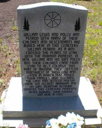 PINETOP, CEMETARY - Navajo County, Arizona | CEMETARY PINETOP - Arizona Gravestone Photos