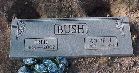 BUSH, FRED - Pinal County, Arizona | FRED BUSH - Arizona Gravestone Photos