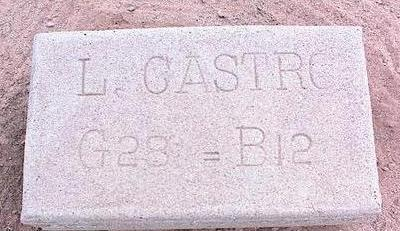 CASTRO, L. - Pinal County, Arizona | L. CASTRO - Arizona Gravestone Photos