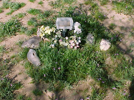 EVANS, BABY GIRL - Pinal County, Arizona | BABY GIRL EVANS - Arizona Gravestone Photos