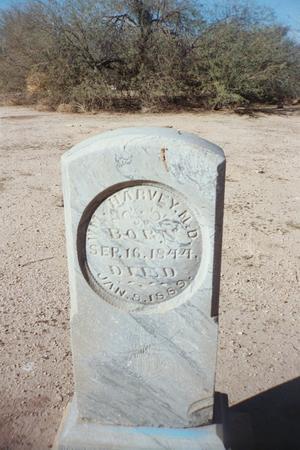 HARVEY, WM, MD - Pinal County, Arizona | WM, MD HARVEY - Arizona Gravestone Photos