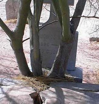 LOPEZ, REDUCINDO A. - Pinal County, Arizona   REDUCINDO A. LOPEZ - Arizona Gravestone Photos