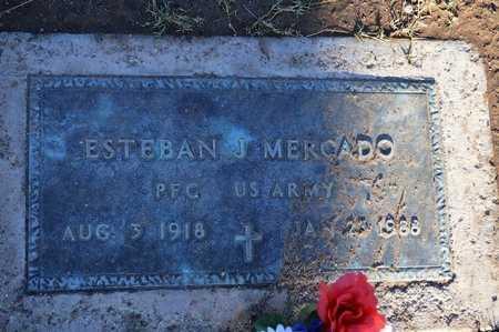 MERCADO, ESTEBAN J. - Pinal County, Arizona | ESTEBAN J. MERCADO - Arizona Gravestone Photos