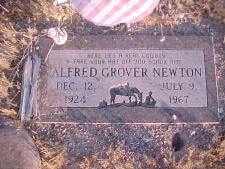 NEWTON, ALFRED GROVER - Pinal County, Arizona | ALFRED GROVER NEWTON - Arizona Gravestone Photos