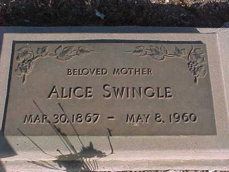 SWINGLE, ALICE - Pinal County, Arizona   ALICE SWINGLE - Arizona Gravestone Photos