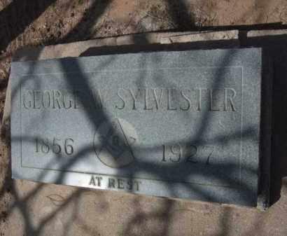 SYLVESTER, GEORGE W. - Pinal County, Arizona   GEORGE W. SYLVESTER - Arizona Gravestone Photos