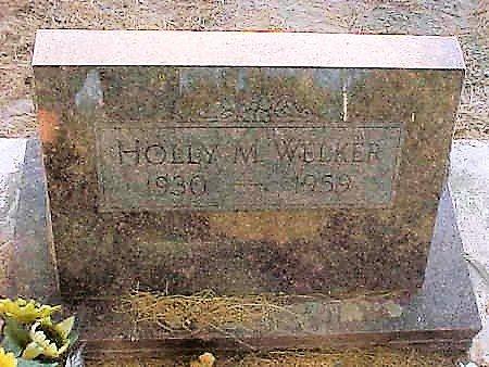 WELKER, RONALD  W. - Pinal County, Arizona   RONALD  W. WELKER - Arizona Gravestone Photos