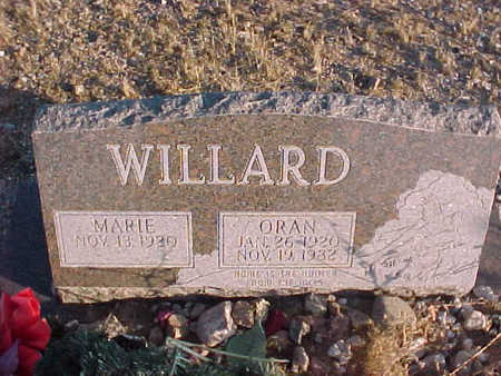 WILLARD, ORAN - Pinal County, Arizona | ORAN WILLARD - Arizona Gravestone Photos