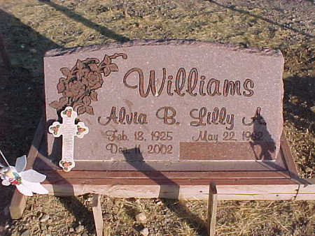 WILLIAMS, ALVIA  B., JR. - Pinal County, Arizona | ALVIA  B., JR. WILLIAMS - Arizona Gravestone Photos
