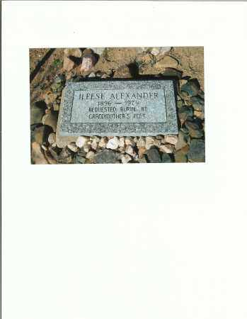 CAMPBELL BRISTOW, ILEESE - Yavapai County, Arizona | ILEESE CAMPBELL BRISTOW - Arizona Gravestone Photos