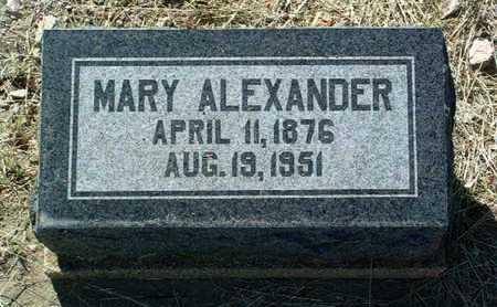 ALEXANDER, MARY - Yavapai County, Arizona | MARY ALEXANDER - Arizona Gravestone Photos