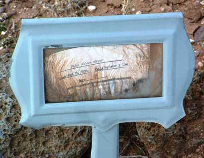 ALLEN, RUBY ALINE - Yavapai County, Arizona | RUBY ALINE ALLEN - Arizona Gravestone Photos