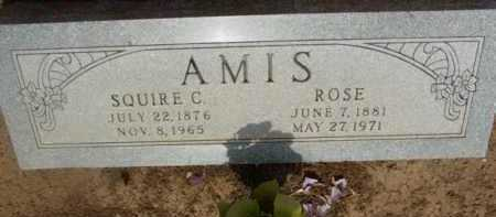 AMIS, SQUIRE C. - Yavapai County, Arizona | SQUIRE C. AMIS - Arizona Gravestone Photos