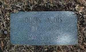 AVDIS, DULIS - Yavapai County, Arizona | DULIS AVDIS - Arizona Gravestone Photos