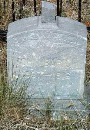 BARICH, JOHN - Yavapai County, Arizona | JOHN BARICH - Arizona Gravestone Photos
