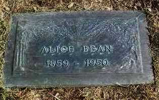 BEAN, ALICE - Yavapai County, Arizona   ALICE BEAN - Arizona Gravestone Photos