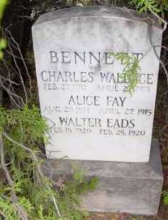 BENNETT, ALICE FAY - Yavapai County, Arizona | ALICE FAY BENNETT - Arizona Gravestone Photos