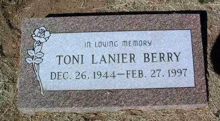BERRY, TONI - Yavapai County, Arizona   TONI BERRY - Arizona Gravestone Photos