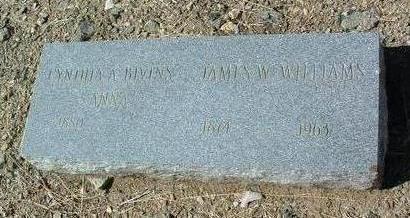BIVINS, CYNTHIA ANNA - Yavapai County, Arizona | CYNTHIA ANNA BIVINS - Arizona Gravestone Photos