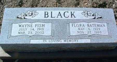 BLACK, WAYNE FISH - Yavapai County, Arizona | WAYNE FISH BLACK - Arizona Gravestone Photos