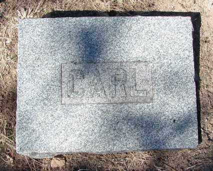 BRIGGEMAN, CARL - Yavapai County, Arizona | CARL BRIGGEMAN - Arizona Gravestone Photos