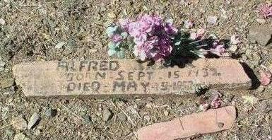 BRINK, ALFRED FRANKLIN - Yavapai County, Arizona | ALFRED FRANKLIN BRINK - Arizona Gravestone Photos
