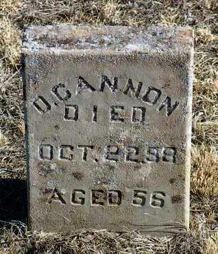 CANNON, DENNIS - Yavapai County, Arizona | DENNIS CANNON - Arizona Gravestone Photos