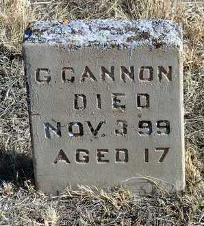 CANNON, GERTRUDE - Yavapai County, Arizona   GERTRUDE CANNON - Arizona Gravestone Photos