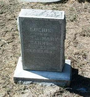 CANNON, LUCIUS, JR. - Yavapai County, Arizona   LUCIUS, JR. CANNON - Arizona Gravestone Photos