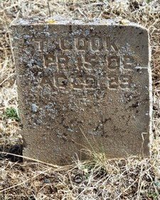 COOK, THOMAS - Yavapai County, Arizona | THOMAS COOK - Arizona Gravestone Photos