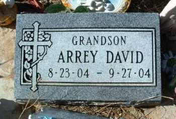 WELLS, ARREY DAVID - Yavapai County, Arizona | ARREY DAVID WELLS - Arizona Gravestone Photos