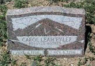 VAN ZILAN EYLER, CAROL - Yavapai County, Arizona | CAROL VAN ZILAN EYLER - Arizona Gravestone Photos